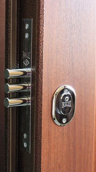 дополнительная железная дверь
